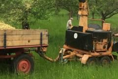 Baumschnitt-2020-Häckseleinsatz-01